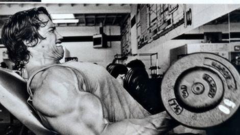 ArnoldBiceps